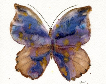 Midnight Butterfly, original watercolor