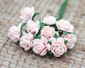 Enchanted  Passion  Series  - Miniature Roses Baby Pink