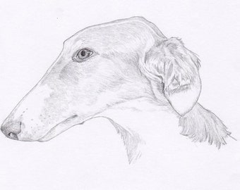 Borzoi Signed Personalized Original Pencil Drawing Double Matted Print -Free Shipping- Desert Impressions