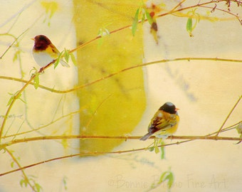 Winter Songbirds Sitting in a Bush - As Seen in HomeGoods TJMaxx stores