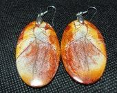 Picasso Jasper Earrings with Sterling