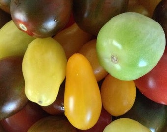 Tomato, Organic Mini Heirloom Tomato Mix Seeds - Bite Sized Heirloom Tomatoes in Various Shapes and Colors!