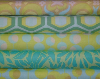Amy Butler Fabric, Full Yard Bundle, Midwest Modern, 5 Yards Total