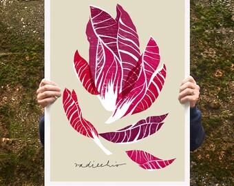 "Kitchen print Radicchio 20""x27"" - archival fine art giclée print"