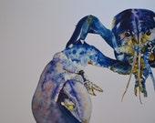 Watercolor Prints (ready ...