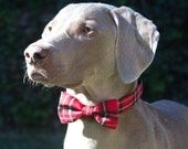 LAST ONE! 3 colors to choose from, Red, beige tartan plaid or red heart, bow tie collar for Cat Dog Pet, dog bow tie collar, pet collar