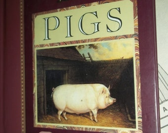 """PIGS WALLOW of Pigs 5 x6"""" book collection illustrations Pig information ENTERTAIN hardback book"""