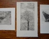 3 prints for david