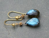 Labradorite Drop and Gold Earrings