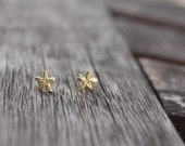 Tiny Starfish Stud Earrings, 5mm Starfish Post, Nautical Stud Earrings, Beach Earrings, Summer Earrings, Ready to Ship