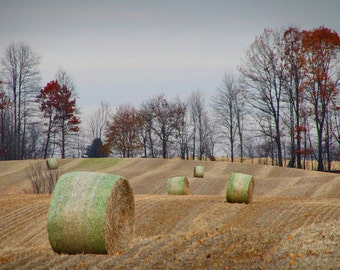 Hay Straw Bales in the field during Autumn Harvest in West Michigan No.605 - A Fine Art Agricultural Fall Landscape Photograph