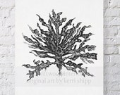 Sea Coral in Charcoal III Print