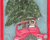 Calico Cat Christmas Card Kitty DRIVES IN CAR delivering Christmas Tree for you Fine Art Illustration