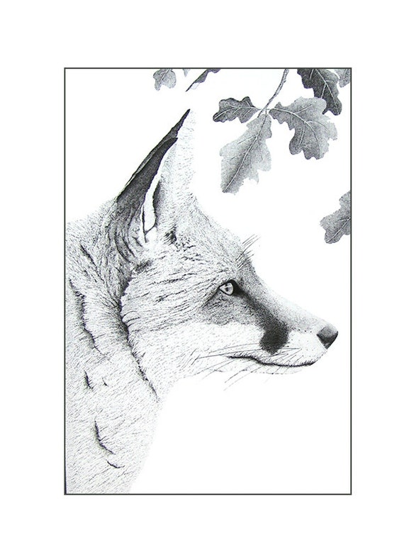 Black and white fox art, Fox illustration animal print, Fox drawing, Graphic art, A4 art print, Pen and ink, Ink art, Monochrome fox
