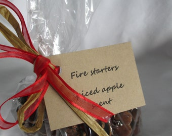 6 pine cone fire starters - spiced apple - double dipped