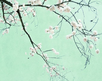 Mint Green Photography, Cherry Blossom Tree, Pale Mint Pink Print, Modern Botanical, Spring Blossoms 8x10