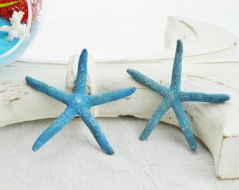 Small Blue Pencil Starfish 2 - 3 inches (1  pc)  Just arrived - Wedding Decor - Craft supplies - Beach Decor - Something Blue