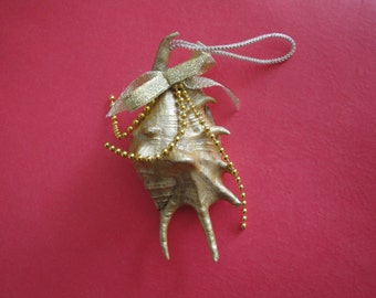 Christmas Ornament Gold Lambis Seashell Ornament