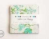 Color Me Happy Charm Pack, Vanessa Christenson, V and Co, Moda Fabrics, 10820PP