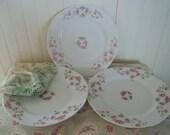 Charming Dessert Plates with Pink Roses / Vintage / KPM German Porcelain