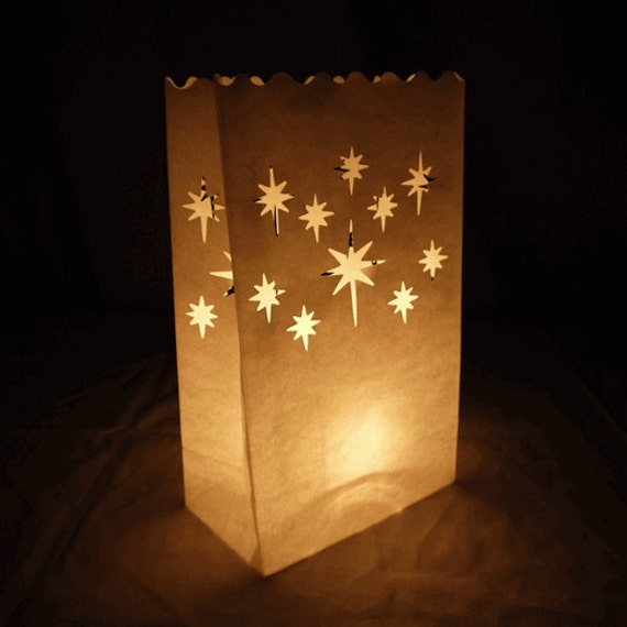 Luminary Bags For Holiday Party Event Winter Wedding