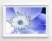 "Macro Flower Photograph Unframed / blue purple flower glow moonlight space surreal magical night / night photography print / ""Lunar Blossom"""
