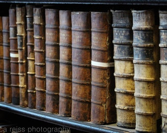 Vintage Antique Old Leather Bound Books Art Print Trinity College Library Long Room Dublin Ireland Photography Rustic Industrial Home Decor