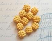 12 pcs clay waffle vanilla miniature