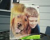 Market Tote - Upcycled Dog Food Bag - Gift Bag