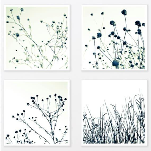 Nature Photography Print Set up to 40x40 trendy man art Grass Botanical Art Print Black and White Minimalist loft Wall Decor