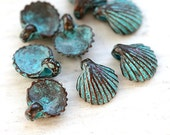 Small shell charms, seashells, green patina on copper, Greek beads, nautical charms, tiny shells - 9mm - 8Pc - F033