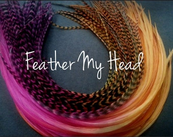 10 Ombre Tie Dye Fade Feather Extension Whiting  Rooster Feathers Medium Length 7-9  Inch (18-23cm) Multi Colored Razberry Mango All Grizzly