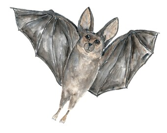 Halloween decor, bat art, watercolor painting, bat painting, halloween art, wildlife painting, gothic art, animal art, 10X8 orginal art