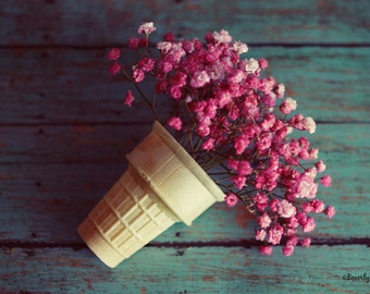 flowers, pink, Spring, fine art photography