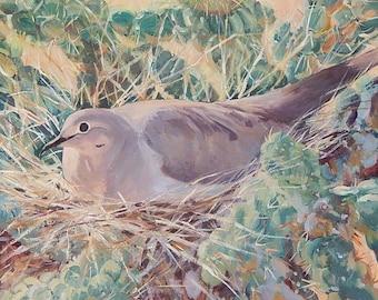 Dove In Cactus