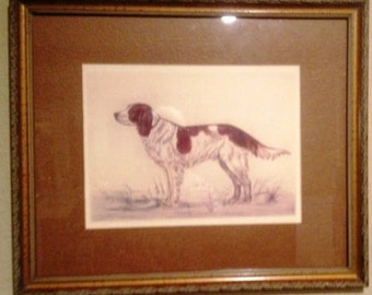 Pair of Hunting Dog Sketches