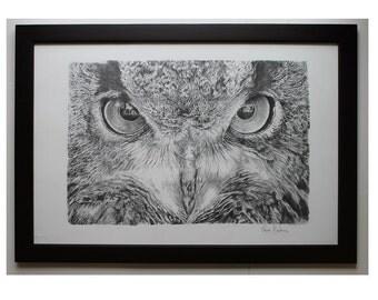 Owl Art print  Owl Illustration animal Wall Decor