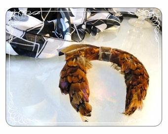Vintage Pheasant Feather Headband Hat - H-039a-072313000