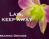Law, Keep Away