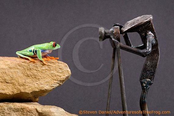 Frog Portrait, Photography of LIVE Frog - Vintage Portrait - Animal Portrait