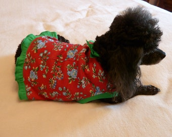 Dog Clothes,  Puppy Dress Size Medium in a Blue Rose Floral Print on a Red Background with Grass Green Trim and Bow