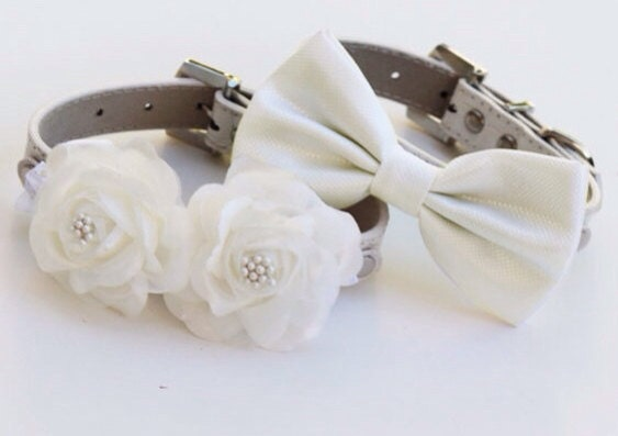 white wedding dog collars two chic wedding dog collars white