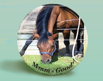 Horse1 - Photo Button Magnet or Pinback Button-2.25 Inch Round