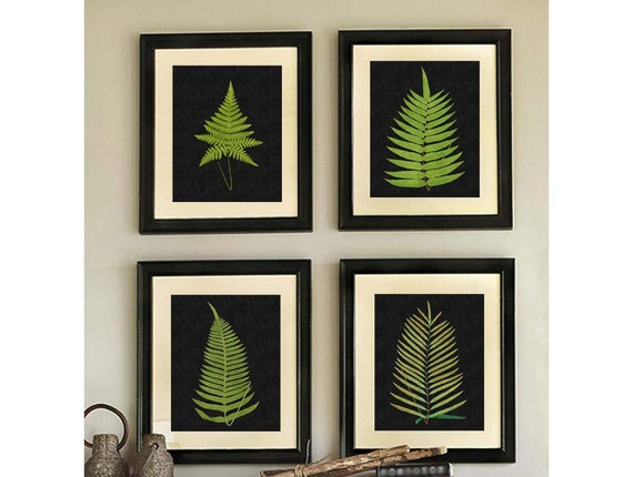Fern Prints, Black Ferns, Black Botanical Prints,  Fern Botanical Prints, Black, Fern Wall Art, Set of Four, Antique Fern, Fern Wall Art