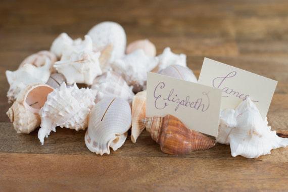 20 Seashell Place Card Holders for Beach Weddings