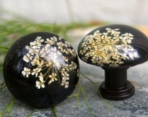 Cabinet Knob, Clear resin with preserved Queen Anne lace - Flower, Garden