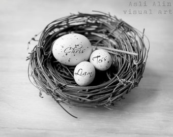 Personalized Bird Nest Print, Grandchildren names, Gift for Grandparents, Family Name Nest, Family Nest, Fine Art Print