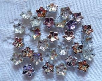 25  Vitrail & Crystal Clear AB 5 Petal Czech Glass Flower Beads  7mm