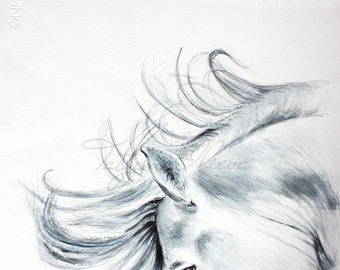 Original Watercolor Painting - Flare. Drawing of a horse, black and white.