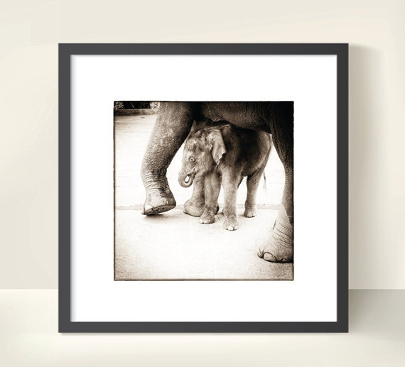 Sepia Photo Art Print. Unique Wall Decor. Elephant Baby in Thailand. Gift for Southeast Asia Lovers. Travel Photography.